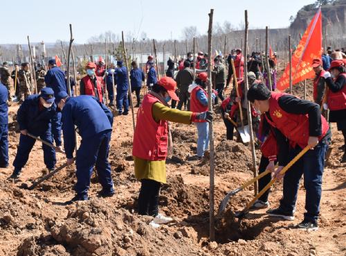 2020年壽陽將新造林8萬余畝